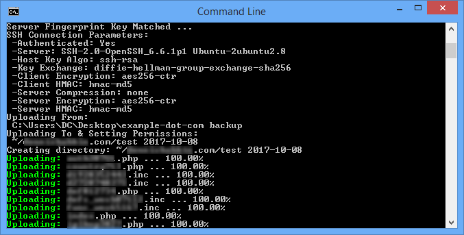 FtpsTransfer Download Output